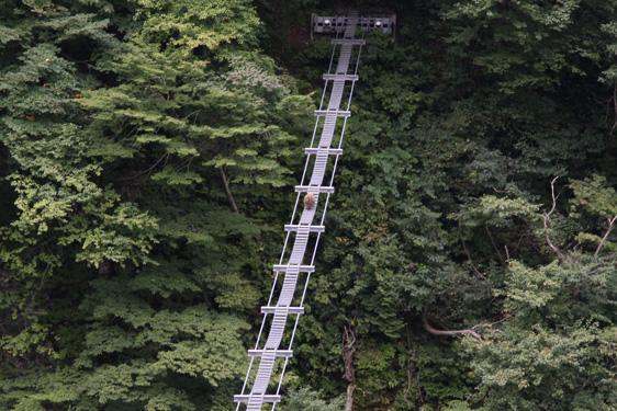 猿用の吊り橋