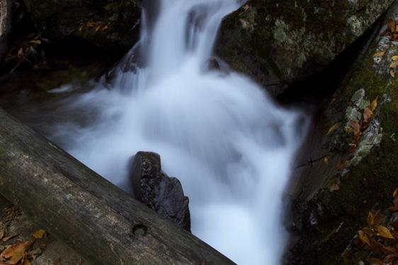 木道と流水