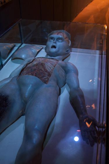 宇宙人の解剖