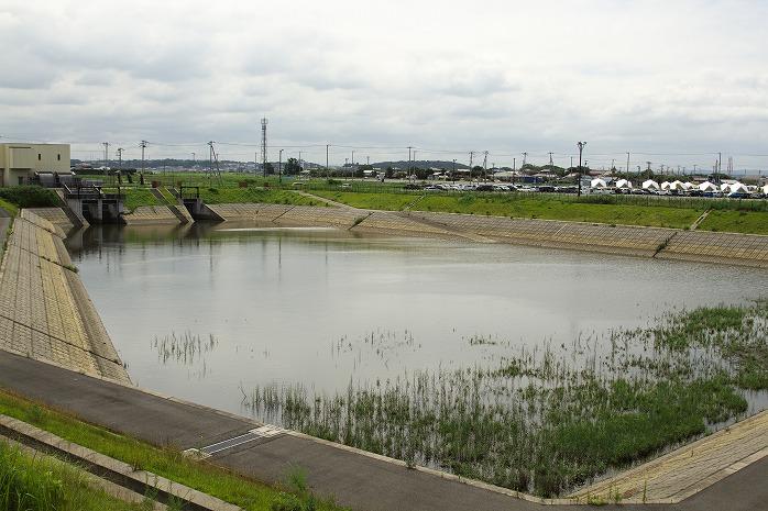 金田さぎなみ公園